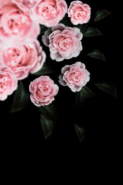 486155f7a6cbe Rose vintage flowers for design background Photo | Premium Download