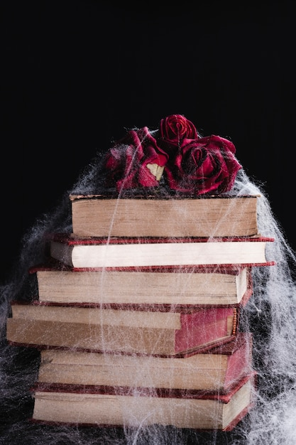 Roses and books with spider web Free Photo
