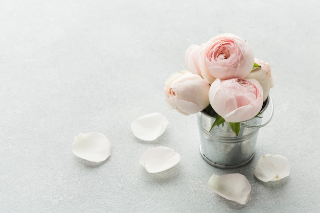 Roses in a metallic bucket and petals Free Photo