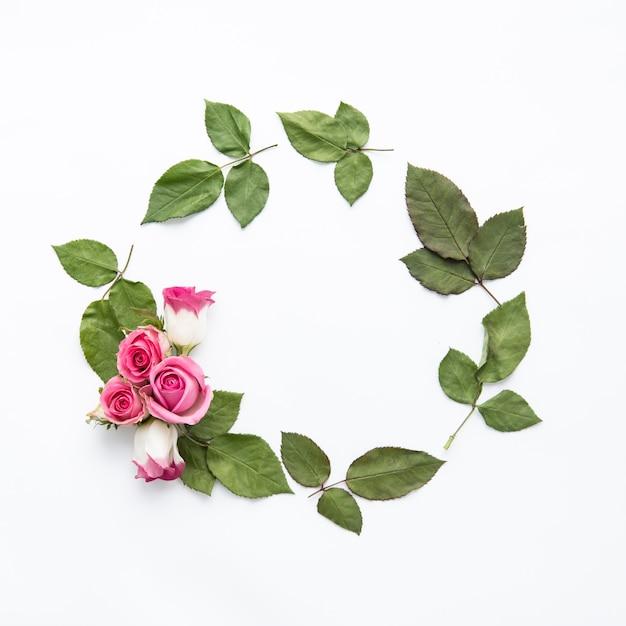 Roses on leaf circle Free Photo