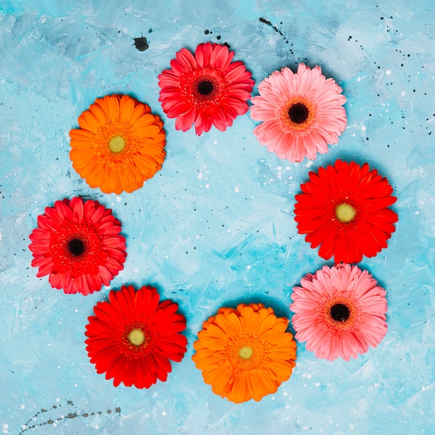 Round frame from gerbera flowers on table Free Photo