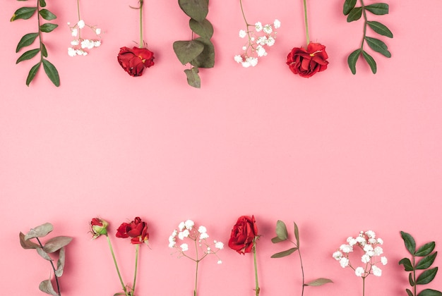 Row of rose; baby's breath; and leafs arranged over peach backdrop Free Photo