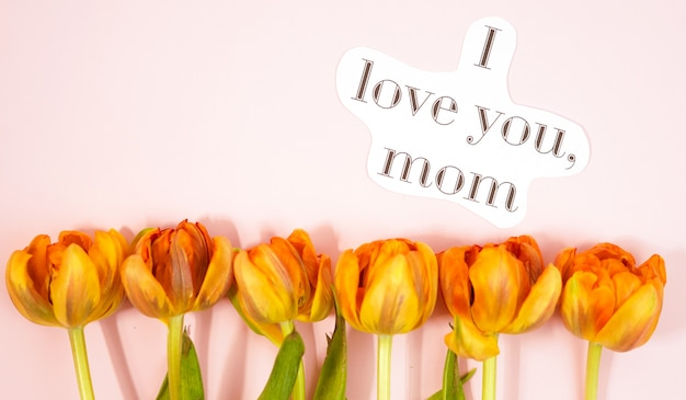 Row of tulips on coloful background with space for message. mother's day background. top view Premium Photo