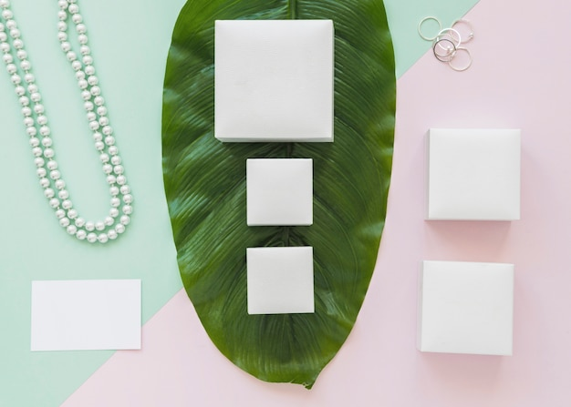 Row of white boxes on green leaf with jewelry on pastel background Free Photo
