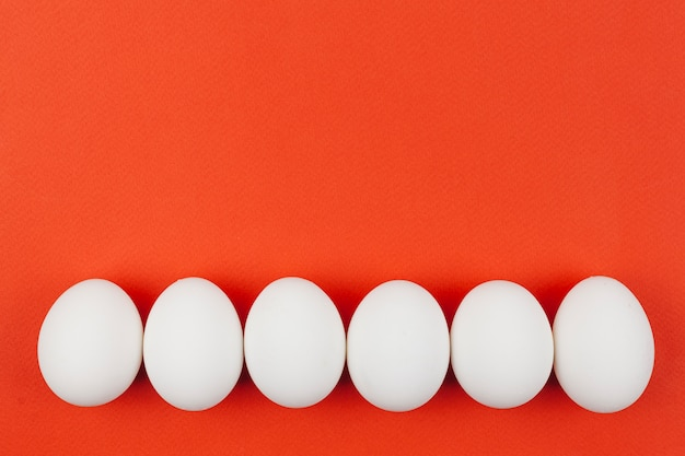 Row of white chicken eggs on table Free Photo