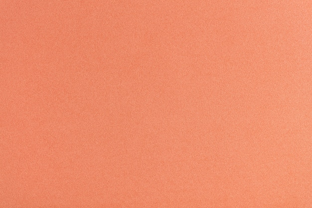 Rubber Coral Color Pastel Tone Photo Premium Download