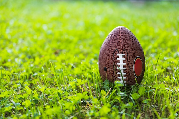 Rugby ball on green grass Free Photo