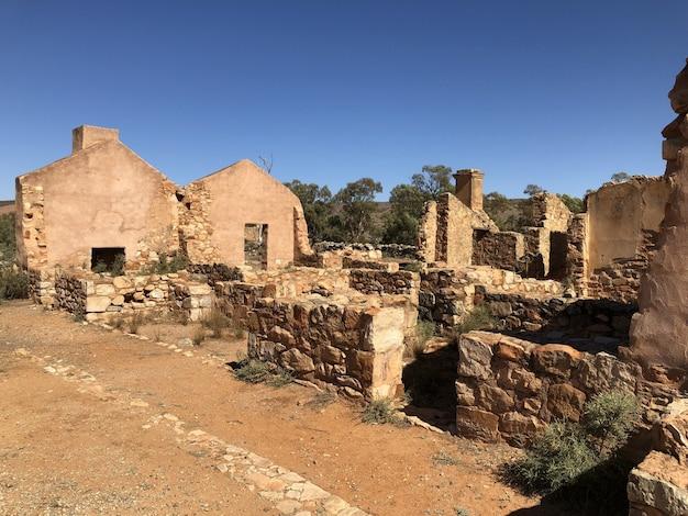 Руины в пустыне с деревьями и голубым ясным небом Бесплатные Фотографии
