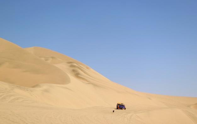 Running dune buggy chasing by a naughty dog on the sand dunes of huacachina desert, ica region, peru Premium Photo