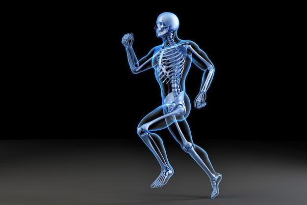 Running skeleton. anatomical 3d illustration Premium Photo