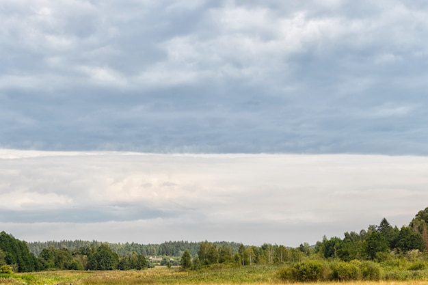 Rural landscape on a cloudy gray sky background Premium Photo