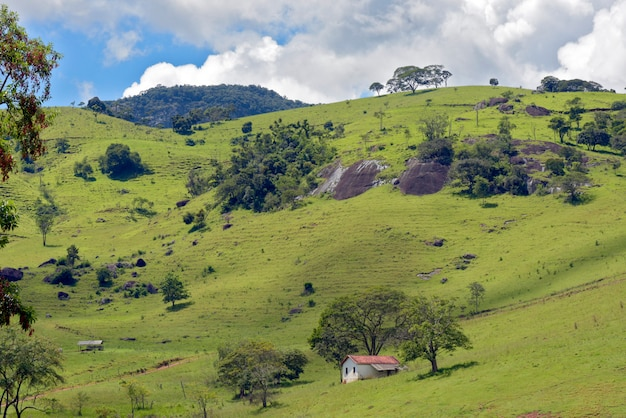 Rural landscape with grass, trees and small house on the hill. minas gerais, brazil Premium Photo