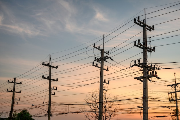 Rural rows of electricity pole with wires network on sunset Premium Photo