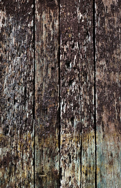 Rustic wooden horizontal placards Free Photo