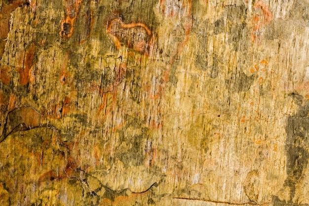 Struttura arrugginita del fondo delle rocce dure Foto Gratuite