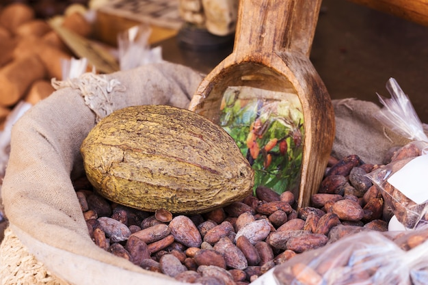 Sack of cocoa beans Premium Photo