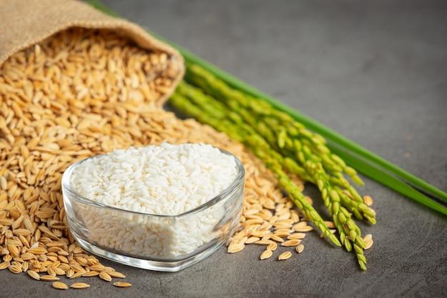 작은 유리 그릇과 벼에 흰 쌀과 쌀 씨앗 자루 무료 사진