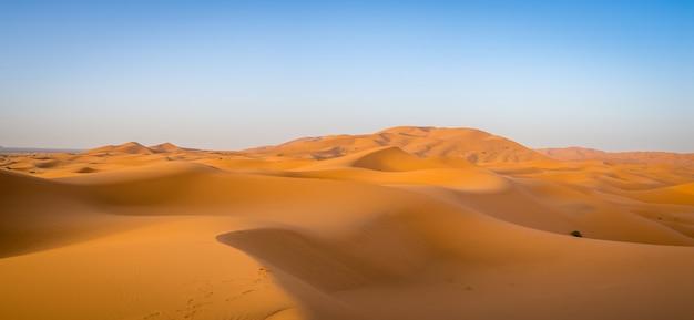 アフリカのモロッコの日光と青い空の下でサハラ砂漠 無料写真