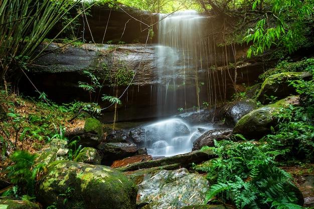 Sai fon (saifon) waterfall in tropical rainforest landscape at phuhinrongkla national park nakhon thai district in phitsanulok, thailand Premium Photo