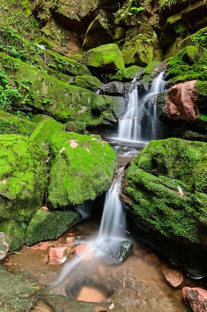 サイチップ滝 Premium写真