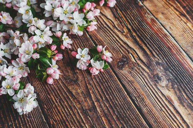 Sakura blooming on dark rustic wood Premium Photo