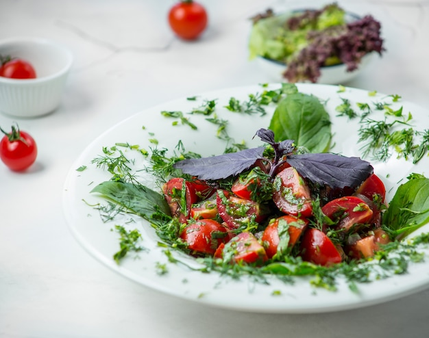 Salad caprese with pesto sauce Free Photo