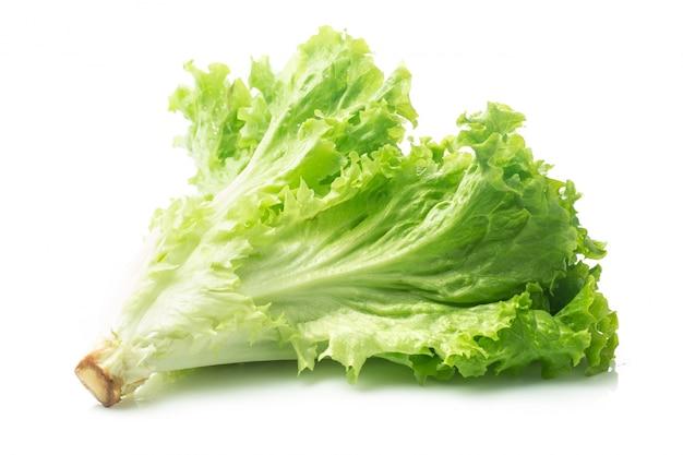 Salad leaf. lettuce isolated on white background. Free Photo