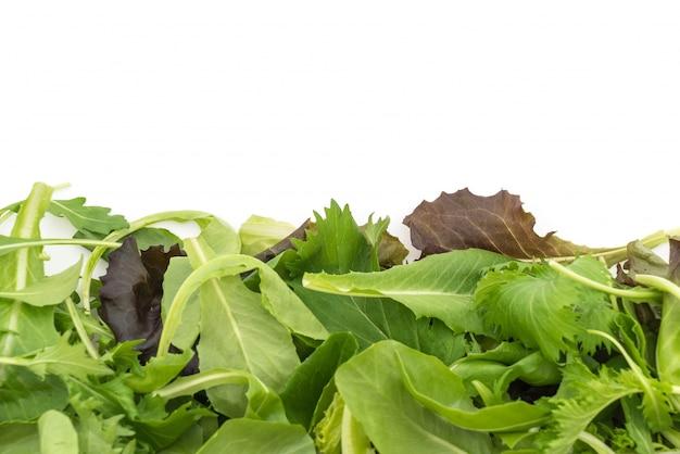 Salad mix with rucola, frisee, radicchio and lamb's lettuce Free Photo