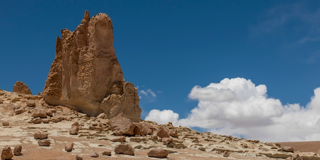 大聖堂の岩、salar de atacama、サンペドロデアタカマ、el loa province、antofagasta region、 Premium写真