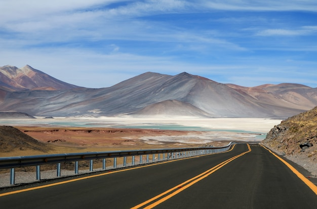 チリ北部のsalar de talar、美しい高原塩の平原、塩湖への道 Premium写真