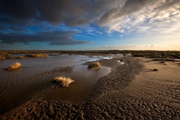 オランダ、クウェーデホークの曇り空の下の塩性湿地と平らな泥 無料写真