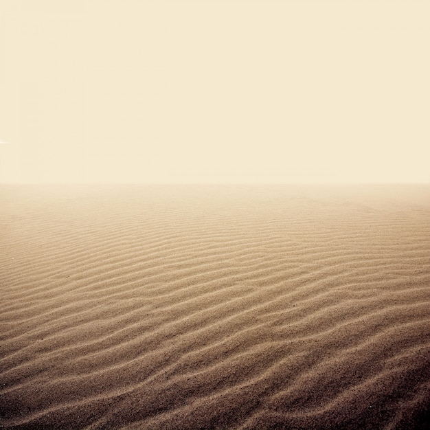 Sand on the dry desert. Free Photo