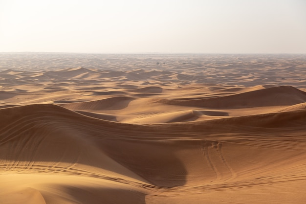 車の車輪の痕跡がある砂漠の砂丘 Premium写真
