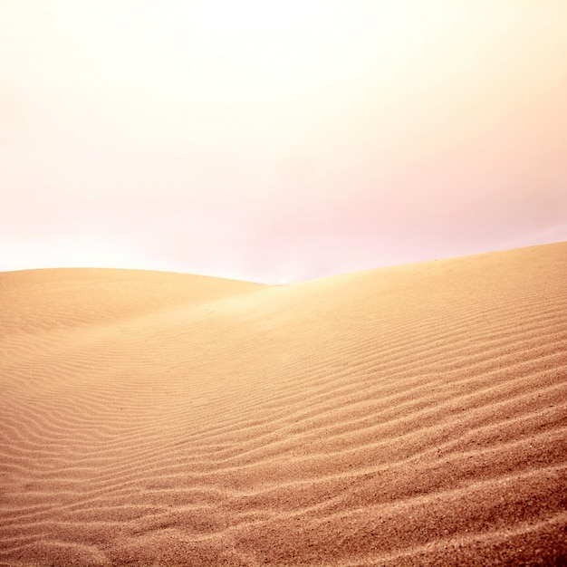 Sand dunes and sky on the desert. Free Photo