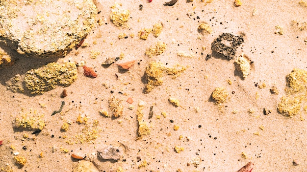 Sand and rocks Free Photo