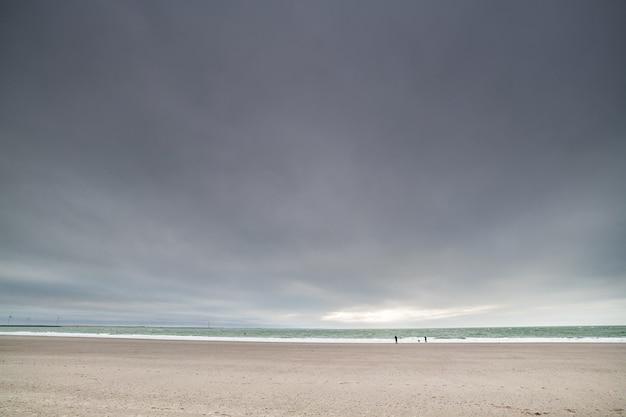 뉴질랜드 북해의 모래 해변 무료 사진