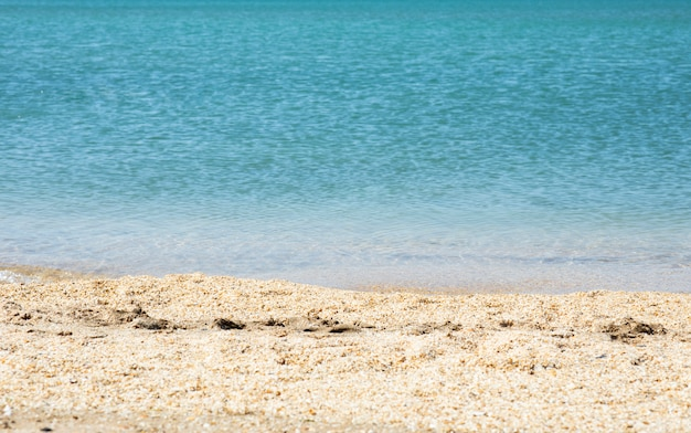 Sandy coast of a blue sea or ocean Free Photo