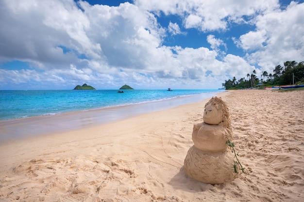 배경, Kailua, O'ahu, Hawai'i에서 Mokulua 섬이있는 Lanikai 해변의 샌디 여자 프리미엄 사진