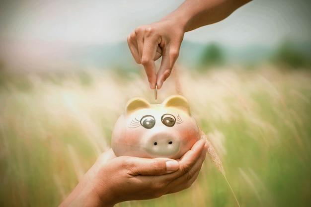 Saving money concept hand puting coins in piggybank on nature background Premium Photo