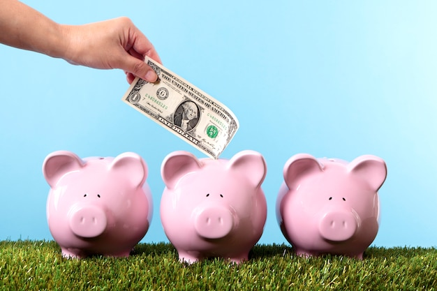 Saving money on the piggybank Free Photo