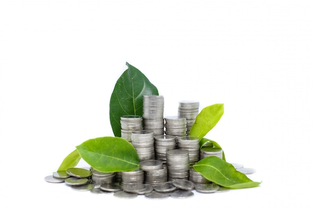 Saving money for your investment future (habit) is similar to growing green leaves on tree Premium Photo