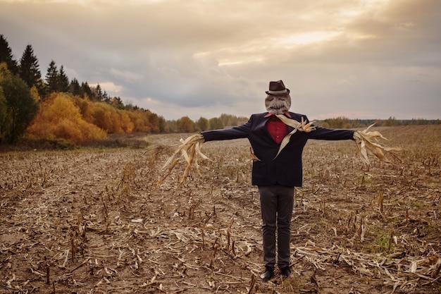 Пугало стоит в осеннем поле на фоне вечернего неба Premium Фотографии