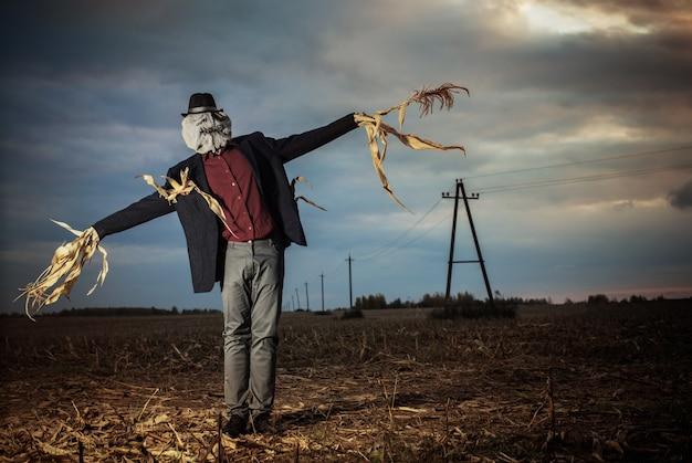 Чучело стоит в осеннем поле на фоне вечернего неба Premium Фотографии