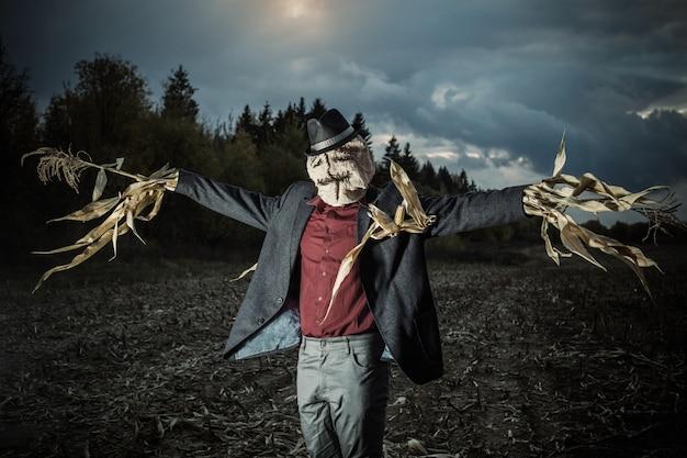Пугало стоит на осеннем поле ночью Premium Фотографии