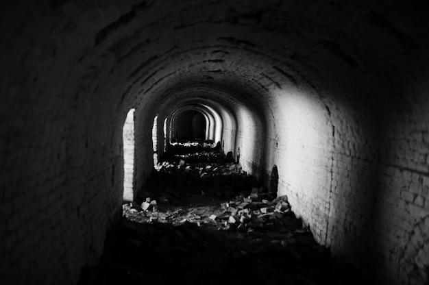 暗いといくつかの光の怖いレンガのアーチトンネル。 Premium写真