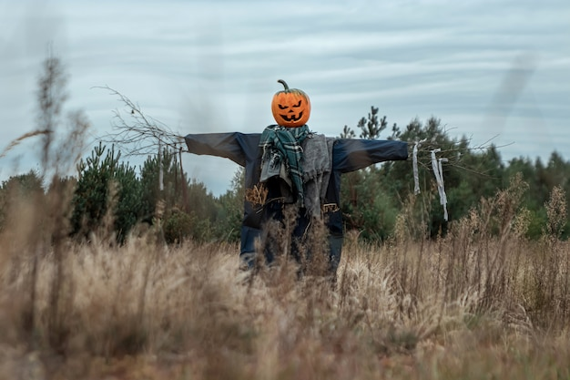 Premium Photo A Scary Scarecrow With A Halloween Pumpkin Head In A Field In Cloudy Weather