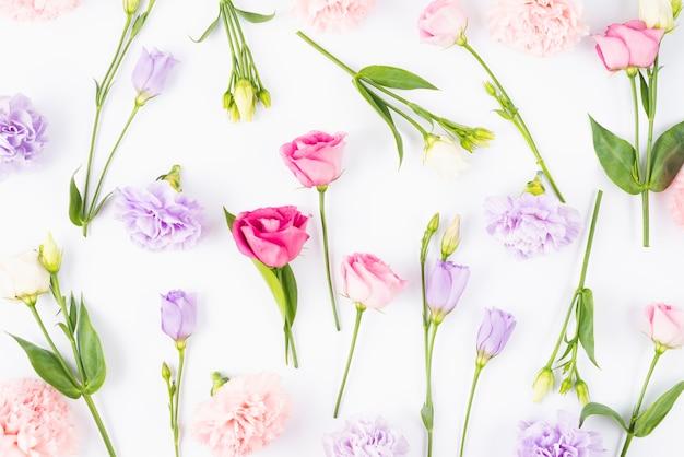 Рассеянные цветы разных цветов Бесплатные Фотографии