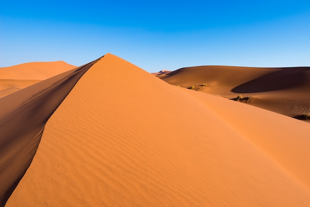 Scenic ridges of sand dunes in sossusvlei, namib naukluft national park, best tourist and travel attraction in namibia. Premium Photo