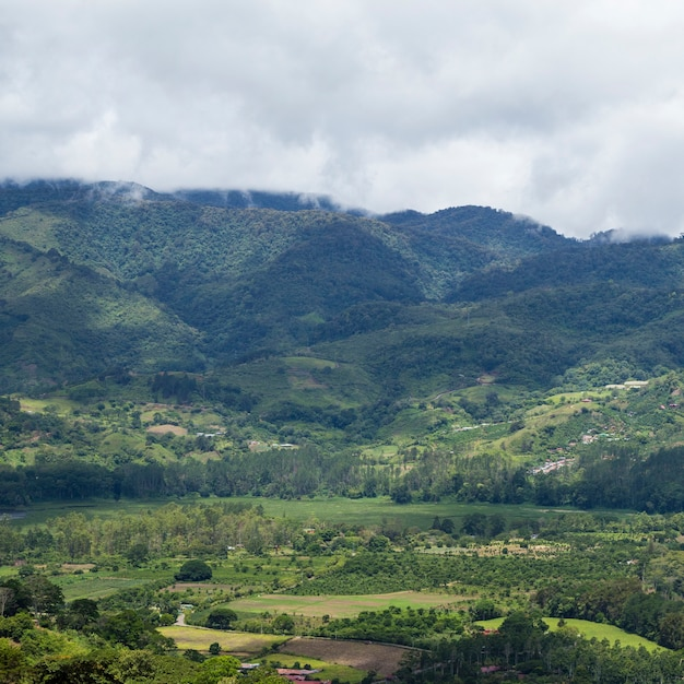 Scenic view of hill and mountain in costa rica Free Photo