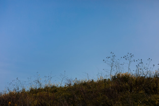 Scenic view of landscape against blue sky Free Photo